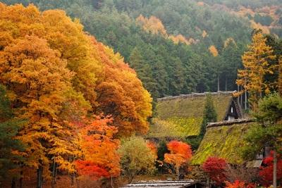 秋の高山祭り 2015