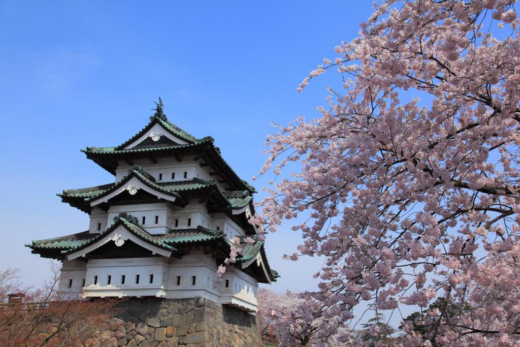 お花見 弘前城