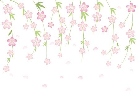 ガーデニング しだれ桜