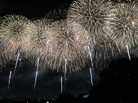 長岡 花火 2日