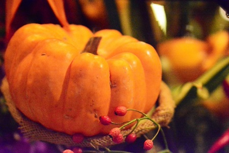 ハロウィン かぼちゃ どこに売ってる