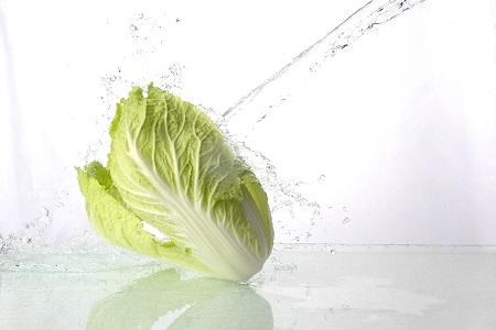 白菜 料理 人気
