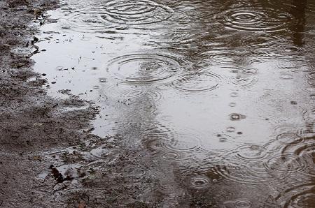梅雨対策 いつから